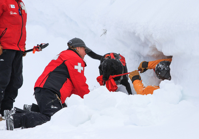 Ski Patrol Manager Michelle French, 56, center, helps avalanche rescue dog Lida pull skier Nick Nordblom out of a snowbank where he was buried during a training exercise at Lee Canyon ski resort o ...