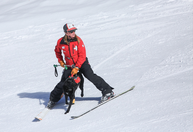 Ski Patrol Manager Michelle French, 56, skis down the mountain with nearly 2-year-old rescue dog Lida after a training exercise at Lee Canyon ski resort on Mount Charleston on Thursday, Feb. 23, 2 ...
