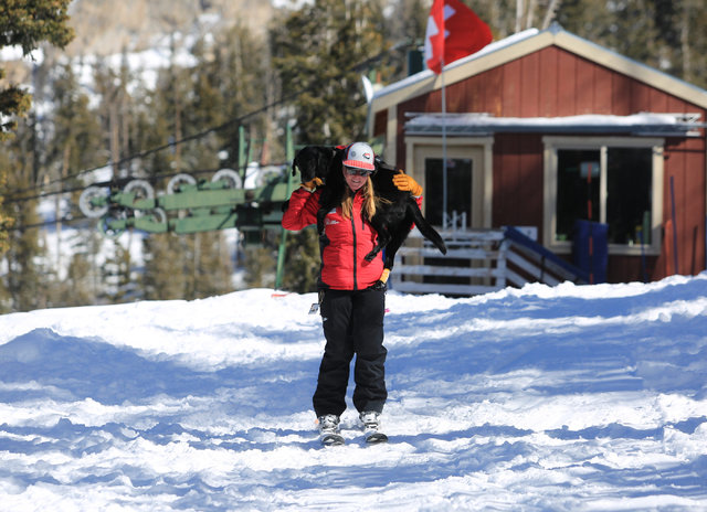 Ski Patrol Manager Michelle French, 56, carries nearly 2-year-old avalanche rescue dog Lida after a training exercise at Lee Canyon ski resort on Mount Charleston on Thursday, Feb. 23, 2017, in La ...