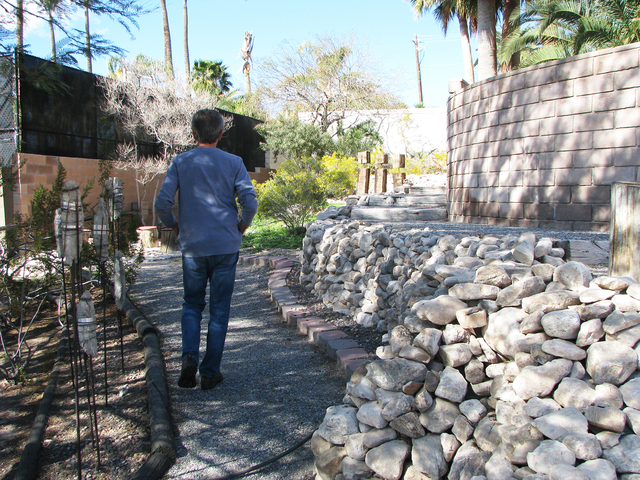 Ron Jensen's strolls through the landscaping of his home on the foothills of Frenchman Mountain. Jensen created the landscaping, including the mortarless stone wall. (F. Andrew Taylor/View) @FAn ...