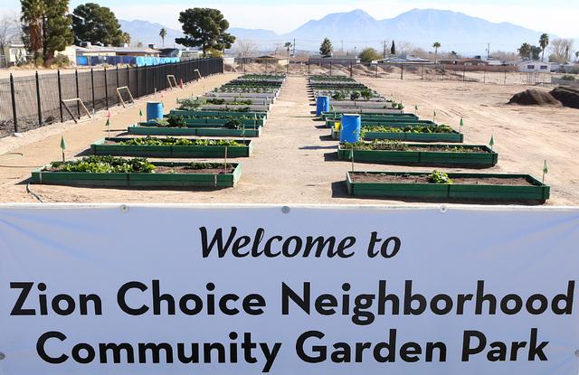 Zion Choice Neighborhood Community Garden Park in North Las Vegas on Wednesday, Feb. 1, 2017. (Bizuayehu Tesfaye/Las Vegas Review-Journal) @bizutesfaye