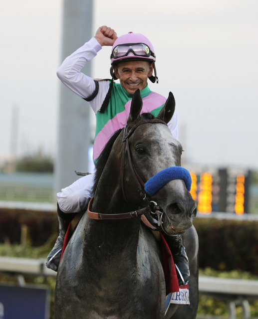 Jockey Mike Smith celebrates after riding Arrogate to victory in the inaugural running of the $12 million Pegasus World Cup horse race at Gulfstream Park, Saturday, Jan. 28, 2017, in Hallandale Be ...