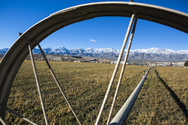 A irritation system sits on a hay field at the Western Elite Ranch near U.S. 93 Highway about 60 miles north of Las Vegas on Wednesday, Jan. 25, 2017. (Jeff Scheid/Las Vegas Review-Journal) @jeffs ...