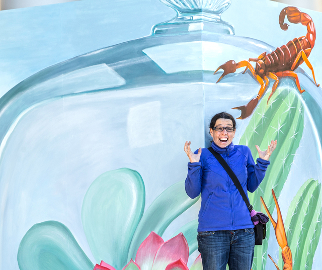 Montse Arango gets her photo taken in front of a Trick Eye Experience painting, one of a set of 3-D interactive art installations outside the Monte Carlo hotel-casino, on Tuesday, Jan. 31, 2017, i ...
