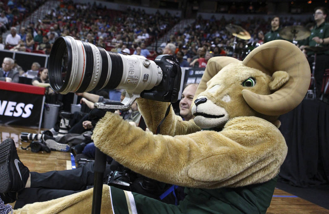 Colorado State mascot CAM the ram holds up a camera during the Mountain West Conference basketball championship game at the Thomas & Mack Center in Las Vegas on Saturday, March 11, 2017. UNR d ...