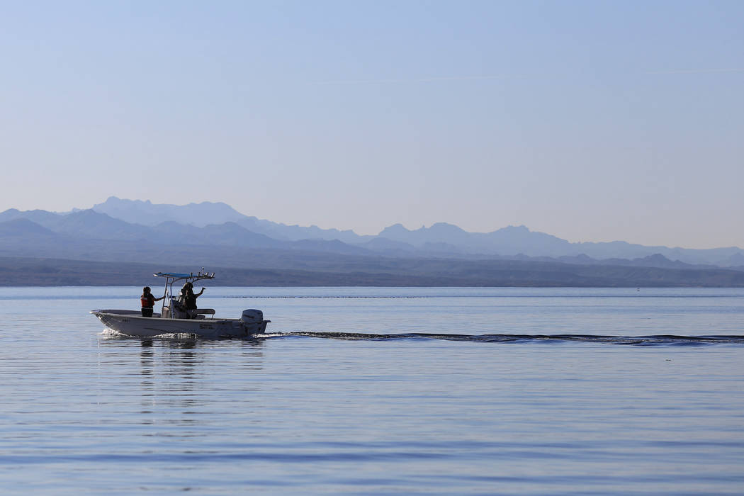 Workers collect razorback sucker fish during a collection on Lake Mohave outside of Las Vegas on Thursday, March 16, 2017. (Brett Le Blanc/Las Vegas Review-Journal) @bleblancphoto