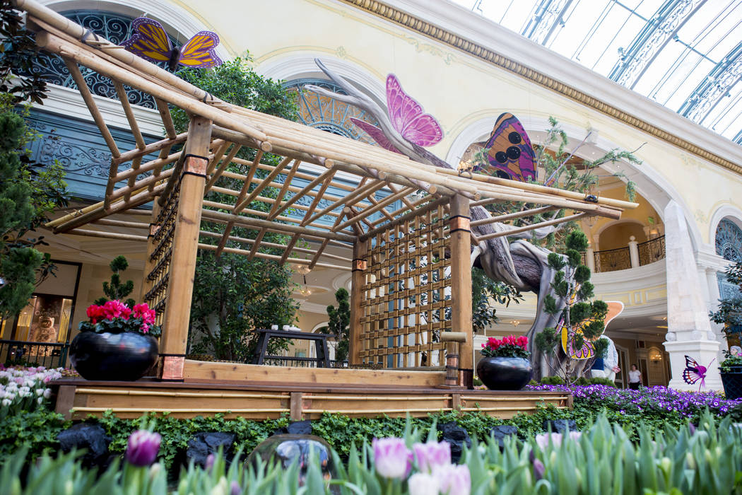 A Traditional Japanese Tea House Surrounded By Flowers In Bellagioճ  Conservatory U0026 Botanical Gardens Spring Display