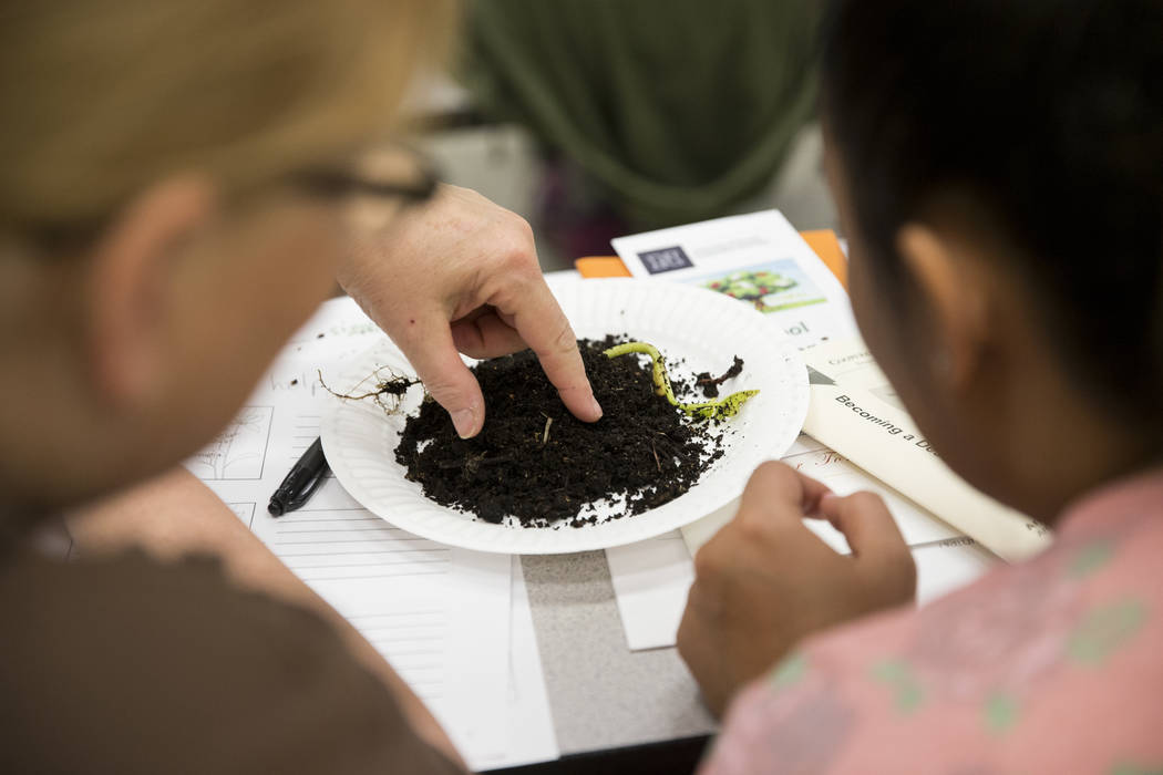 Teachers attend a worm composting class for local teachers at Lake Elementary School on Saturday, March 25, 2017, in Las Vegas. (Erik Verduzco/Las Vegas Review-Journal) @Erik_Verduzco