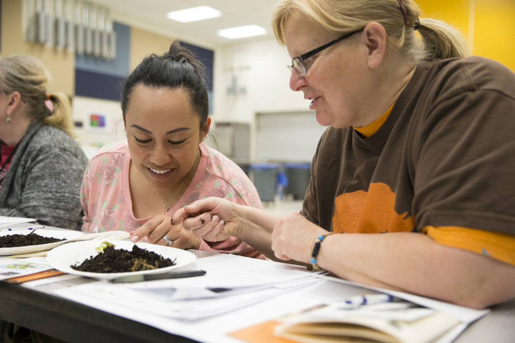 Piggott Academy teachers Gracie Scrivo, left, and Tracy Fischer, attend a worm composting class for local teachers at Lake Elementary School on Saturday, March 25, 2017, in Las Vegas. (Erik Verduz ...