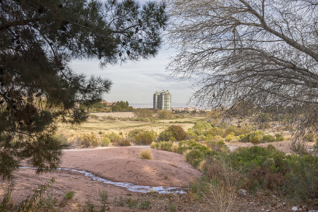 The proposed development of the Badlands golf course, seen here Wednesday, Feb. 1, 2017, has prompted a more than year-long fight between the developer and neighboring residents. (Benjamin Hager/L ...