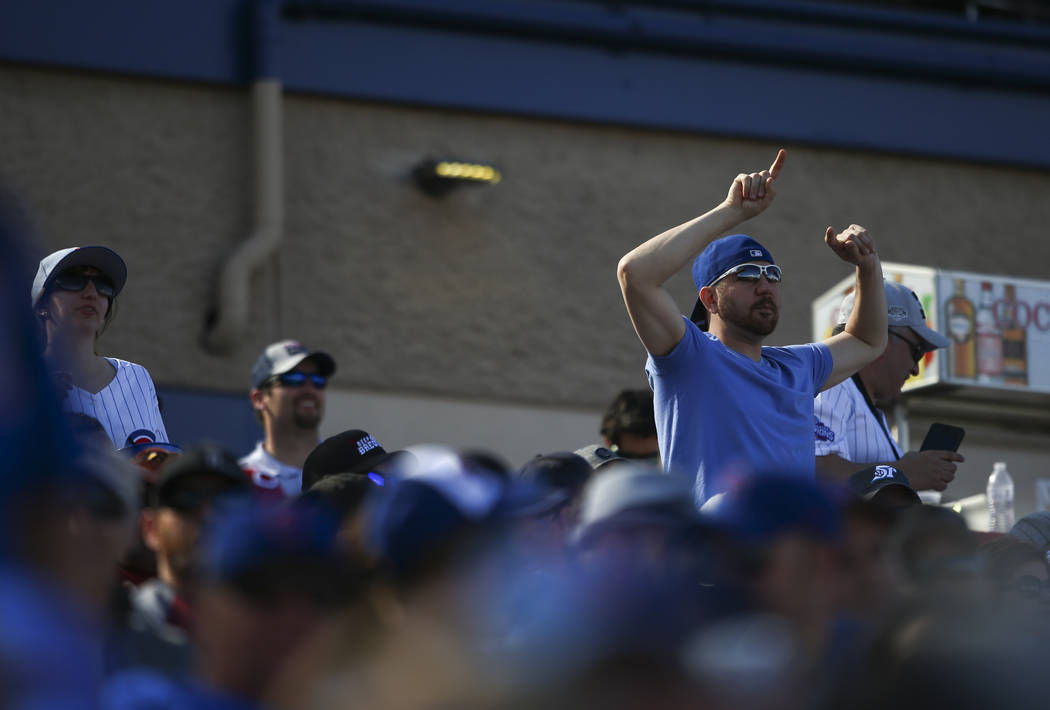 A fan cheers as the Chicago Cubs play the Cincinnati Reds during their Big League Weekend baseball game at Cashman Field in Las Vegas on Saturday, March 25, 2017. (Chase Stevens/Las Vegas Review-J ...