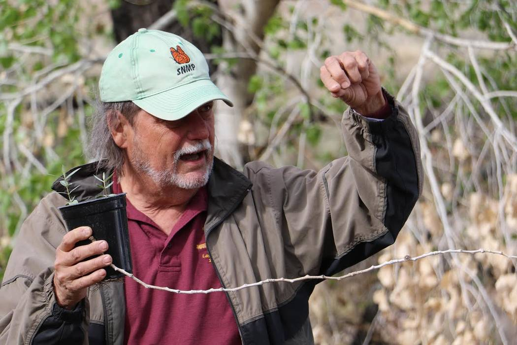 Project organizer Doyle Wayman talks about the relationship between monarch butterflies and milkweed during a volunteer planting event at the Nature Conservancy's Torrance Ranch Preserve, just nor ...