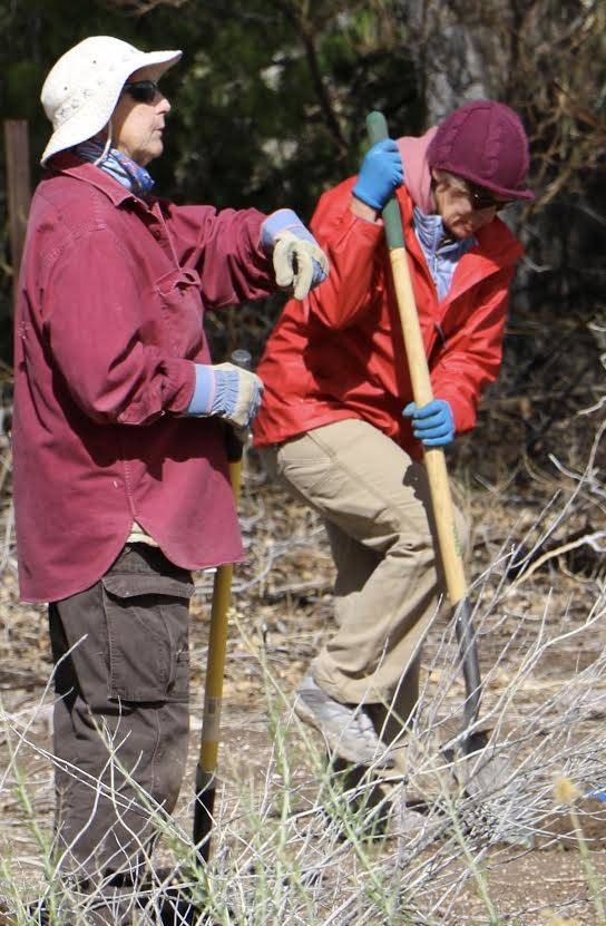 """Jo Poe, left, and Crissi Hachinski take part at a volunteer planting event Saturday at the Nature Conservancy's Torrance Ranch Preserve, home to Nevada's newest nectar plant """"way station"""" for migr ..."""