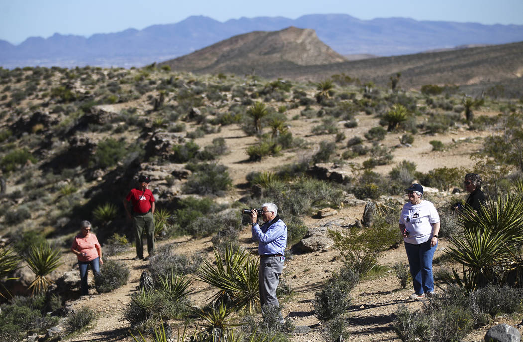 Joe Colavita, center, of Charlotte, N.C., takes around the Calico Hills area of the Red Rock Canyon National Conservation Area outside of Las Vegas on Wednesday, March 29, 2017. (Chase Stevens/Las ...