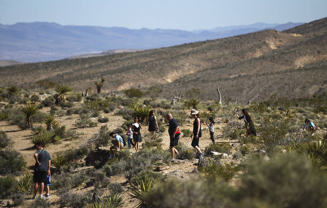 People take in the sights of the Calico Hills area at Red Rock Canyon National Conservation Area outside of Las Vegas on Wednesday, March 29, 2017. (Chase Stevens/Las Vegas Review-Journal) @csstev ...