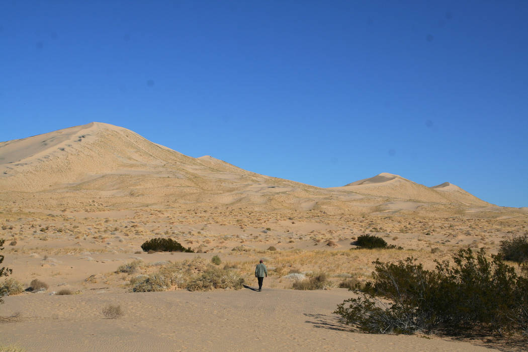 The Kelso Dunes are part of the Mojave National Preserve in California. (Deborah Wall/Courtesy)