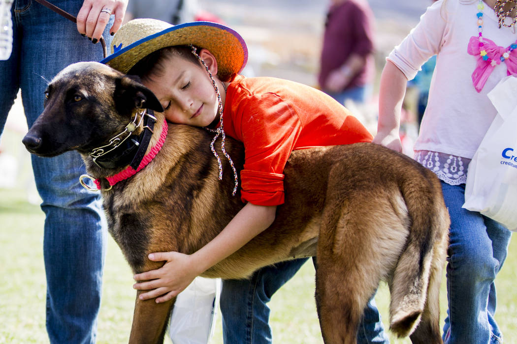 Wyatt Papacs, 7, hugs Zoya, a Belgian Malinois, during Bark In the Park, an event to celebrate dogs, at Cornerstone Park in Henderson on Saturday, March 4, 2017. (Elizabeth Brumley/Las Vegas Revie ...
