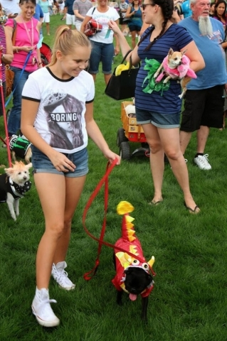 During the Family, Fur & Fun Festival in October at Mountain's Edge, attendees dress up their dogs for popular Pet Halloween Costume Contest. COURTESY