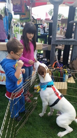 Proceeds from the annual Family, Fur & Festival at Mountain's Edge benefit area animal shelters and rescue organizations. COURTESY