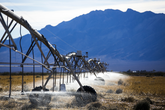 An irrigation system waters a field in Amargosa Valley on Tuesday, Nov. 22, 2016. Jeff Scheid/Las Vegas Review-Journal Follow @jeffscheid