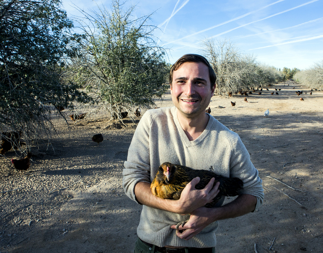 Brett Ottolenghi, left, owner of  Artisanal Foods, holds a chicken at the T&T Ranch in Amargosa Valley on Tuesday, Nov. 22, 2016. Ottolenghi is partnering with the ranch to raise organic free  ...