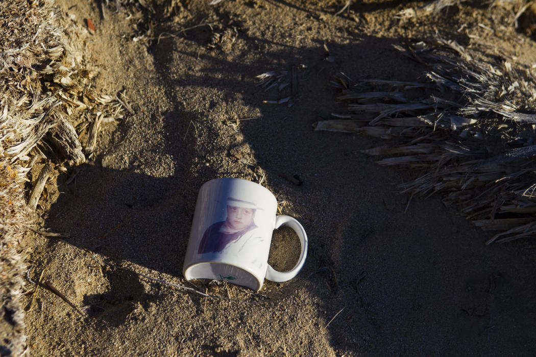 """A mug left by fans of rock band U2 sits with the fallen tree that appeared in the band's 1987 album """"The Joshua Tree"""" outside of Death Valley National Park along California State ..."""