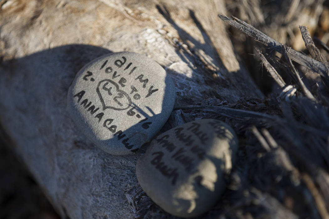 """A rock left by fans of rock band U2 sits with the fallen tree that appeared in the band's 1987 album """"The Joshua Tree"""" outside of Death Valley National Park along California Stat ..."""