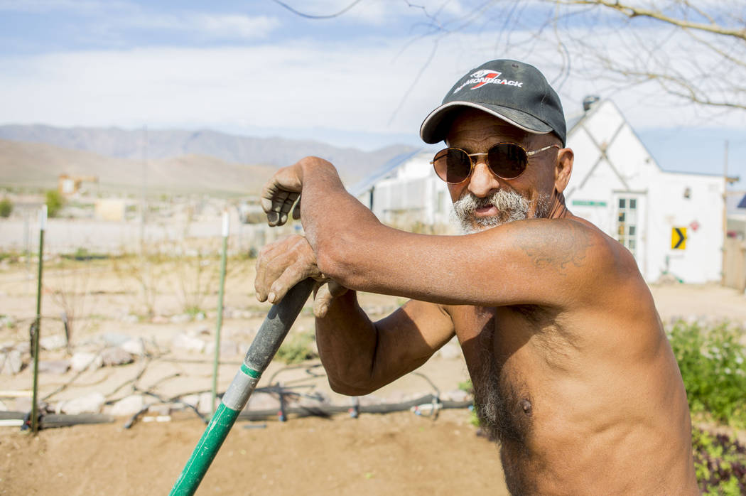 DesDesert Bloom Eco Farm laborer Raul Portal breaks from tilling the ground in Tecopa, Calif. Thursday, March 23, 2017. (Elizabeth Brumley/Las Vegas Review-Journal) @EliPagePhoto