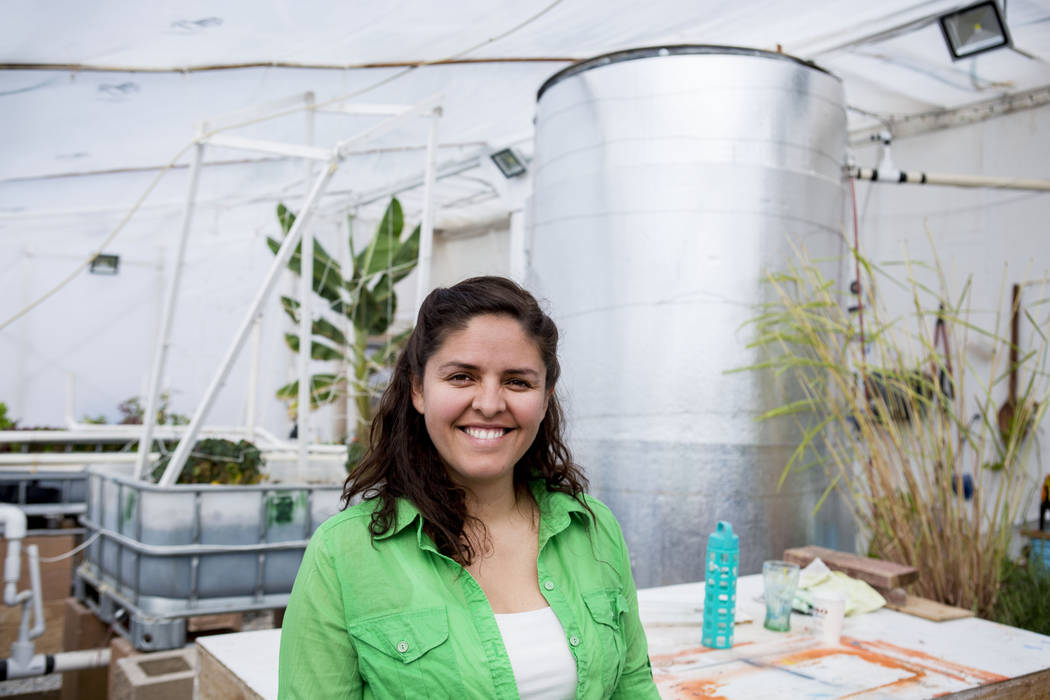 CFO of Desert Bloom Eco Farm Claudia Andracki uses solar energy to run her aquaponics greenhouse in Tecopa, Calif . Thursday, March 23, 2017. (Elizabeth Brumley/Las Vegas Review-Journal) @EliPagePhoto