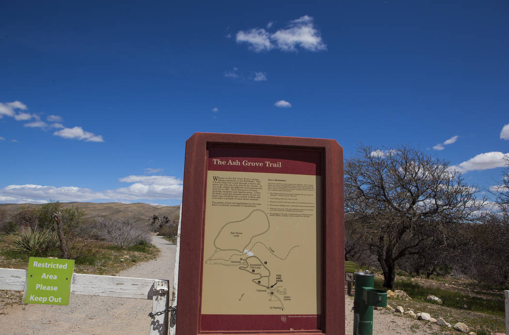 The Ash Grove trail during the Mojave Spring Fling Festival at Spring Mountain Ranch State Park on Saturday, April 1, 2017. (Miranda Alam/Las Vegas Review-Journal) @miranda_alam