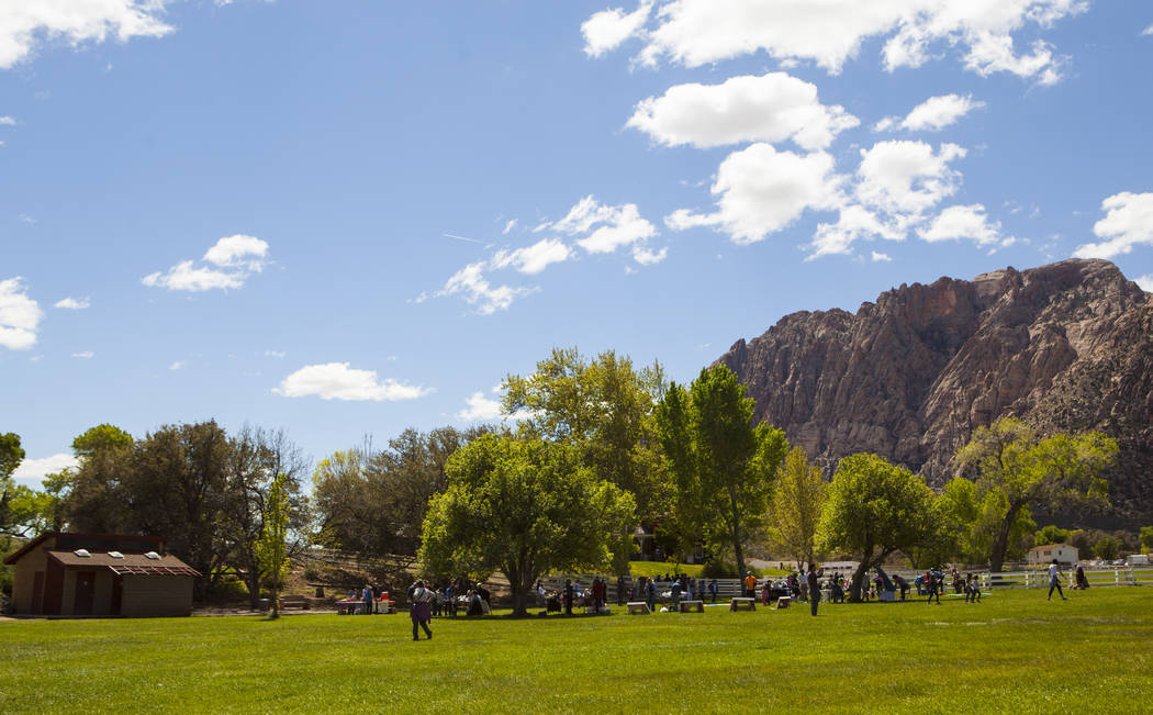 The Mojave Spring Fling Festival at Spring Mountain Ranch State Park on Saturday, April 1, 2017. (Miranda Alam/Las Vegas Review-Journal) @miranda_alam