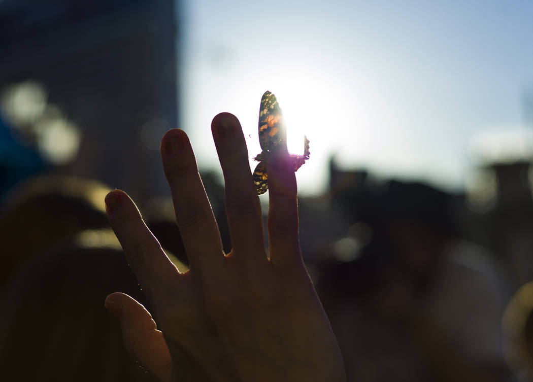 A participant holds a butterfly after a butterfly release honoring World Autism Awareness Day held by the Grant a Gift Autism Foundation outside of The Venetian hotel-casino in Las Vegas on Sunday ...