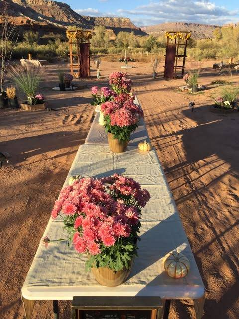 Flowers await guests at a garden party Brent Fitzpatrick held in November on his 56-acre property a few miles outside Zion National Park. Fitzpatrick plans to develop an art garden and tourists vi ...