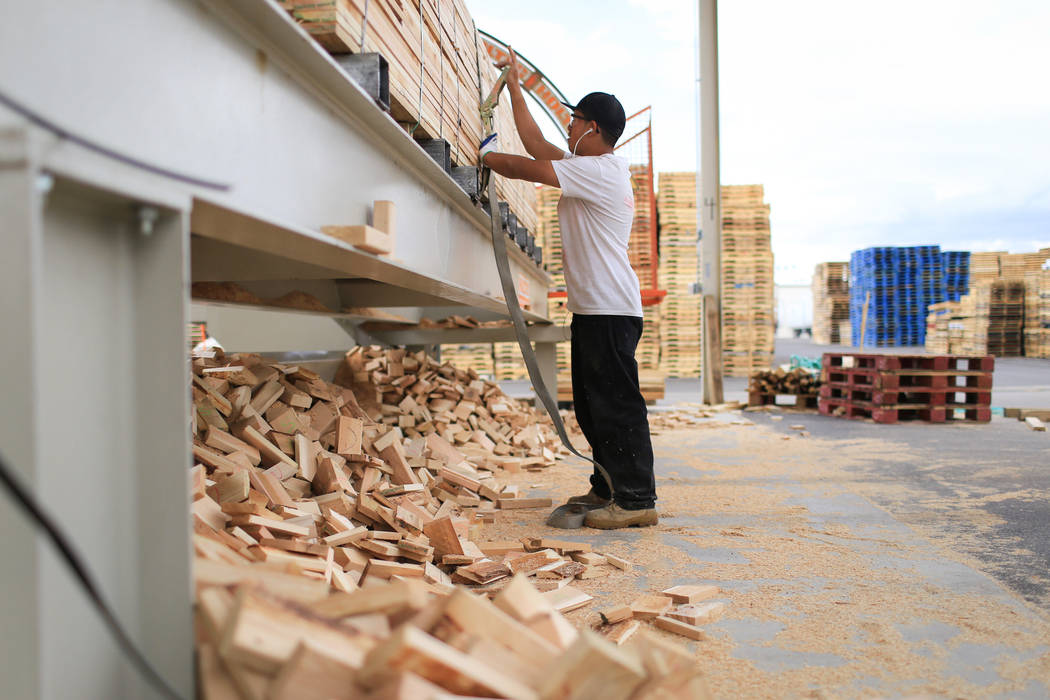 Tobias Morales cuts long planks of wood to size at Power Pallets in North Las Vegas on Friday, April 7, 2017. Brett Le Blanc Las Vegas Review-Journal @bleblancphoto