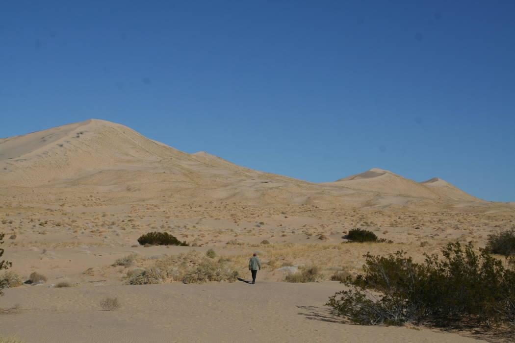 Kelso Sand Dunes, Mojave National Preserve, California (Deborah Wall)