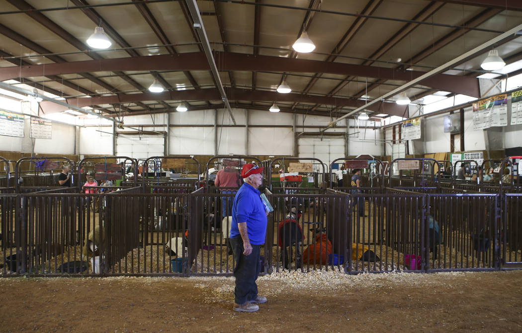 The Glen Hardy Large Animal building during the first day of the Clark County Fair and Rodeo in Logandale on Wednesday, April 12, 2017. Chase Stevens Las Vegas Review-Journal @csstevensphoto