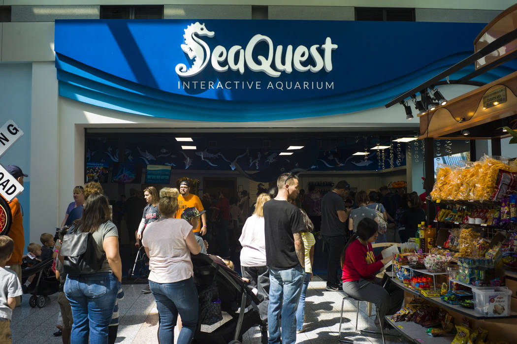 People line up to get into the SeaQuest Interactive Aquarium at the Boulevard Mall in Las Vegas on Friday, April 14, 2017. (Miranda Alam/Las Vegas Review-Journal) @miranda_alam