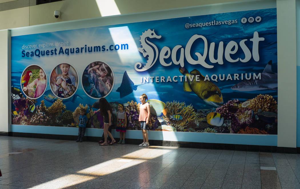Outside of the SeaQuest Interactive Aquarium at the Boulevard Mall in Las Vegas on Friday, April 14, 2017. (Miranda Alam/Las Vegas Review-Journal) @miranda_alam
