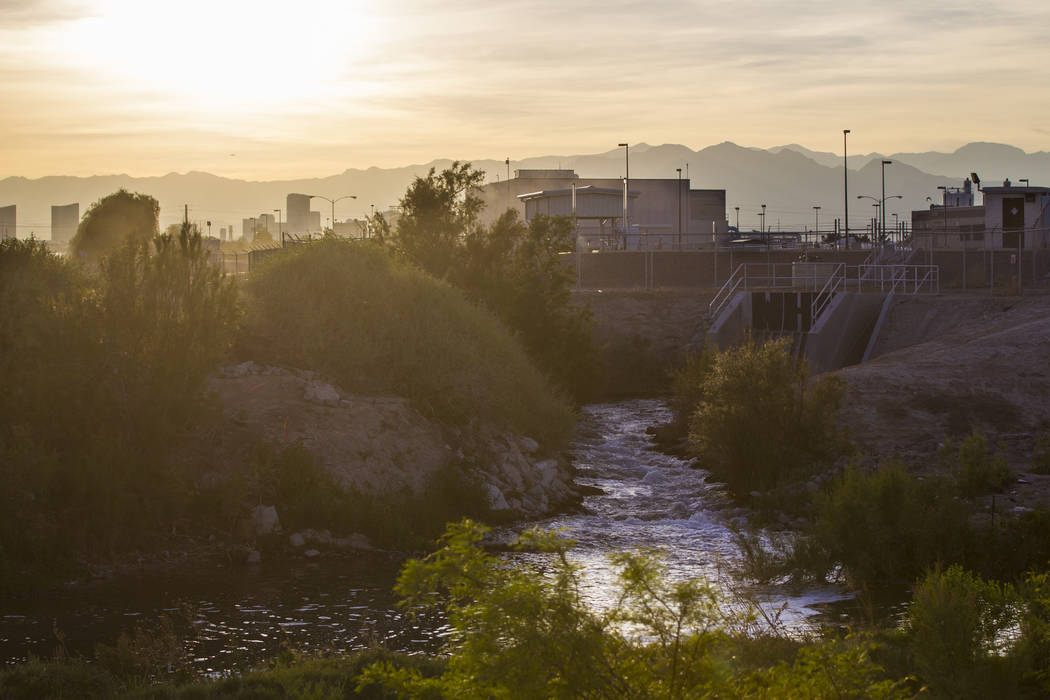 Treated wastewater flows from the City of Las Vegas' sewage treatment plant into the Las Vegas Wash off of Desert Inn Road near Hollywood Boulevard in Las Vegas on Wednesday, April 5, 2017. (Chase ...