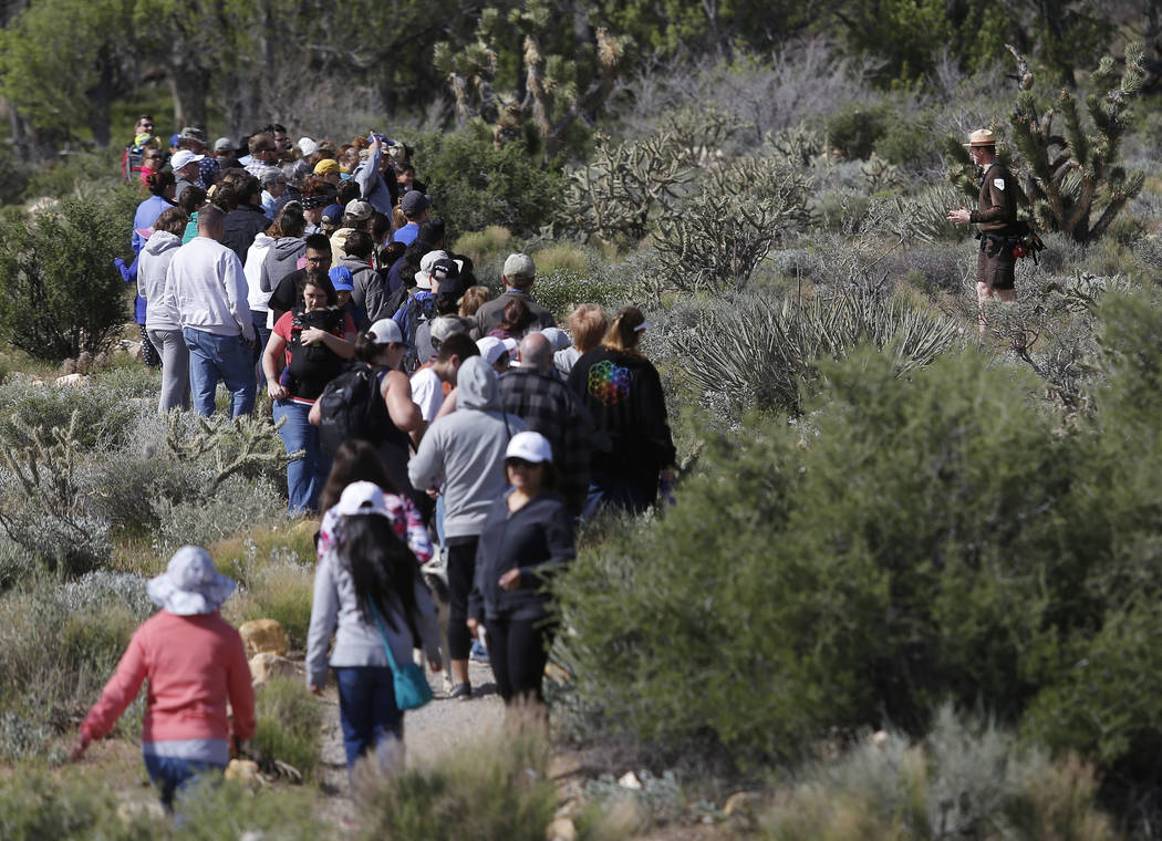 Visitors hike at the Spring Mountain Ranch State Park on Sunday, April 9, 2017, in Blue Diamond, Nevada. Christian K. Lee Las Vegas Review-Journal @chrisklee_jpeg