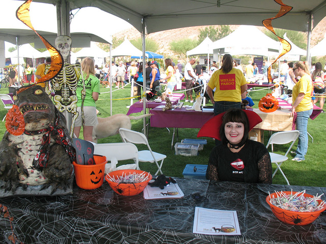 Learn some easy tricks to keep you pet safe on Halloween today from 10 a.m. to 3 p.m. at Exploration Park. (Courtesy)