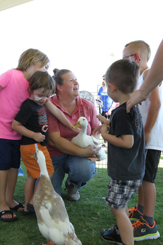 A petting zoo and free ice cream will be featured at the Sunny 106.5 Ice Cream Sunday free event at Providence on Sept. 18. (Courtesy)