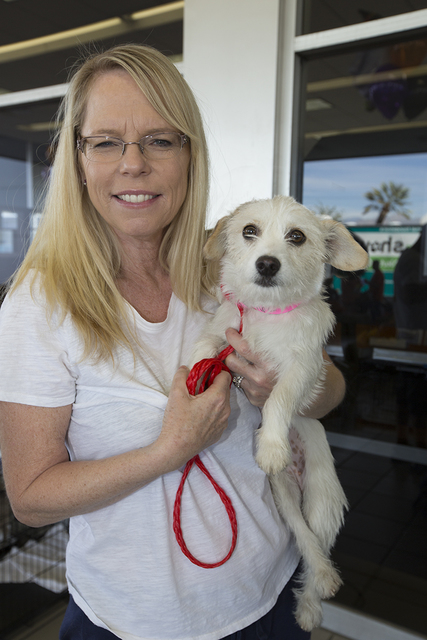 COURTESY Sue Miller holds her female terrier mix named Snow adopted during Paws for the Cause Oct. 22 at Friendly Ford.
