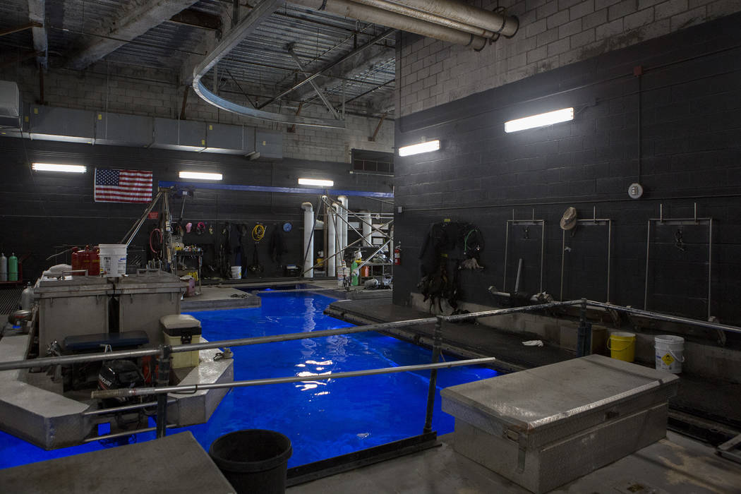 """Boats and other gear are stored in a maintenance area for the Fountains at Bellagio, nicknamed the """"Batcave,"""" on Tuesday, April 18, 2017, at Bellagio hotel-casino in Las Vegas. Bridget Bennett Las ..."""