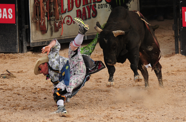 PRCA Bull fighter Donnie Castle is upended by a bull during the Helldorado Days rodeo at the Las Vegas Village grounds in Las Vegas Saturday, May 14, 2016. Josh Holmberg/Las Vegas Review-Journal