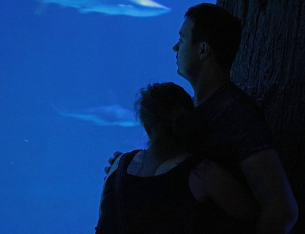 A couple watch the sharks swim by at Mandalay Bay's Shark Reef Aquarium, Tuesday, May 9, 2017. Gabriella Benavidez Las Vegas Review-Journal @latina_ish