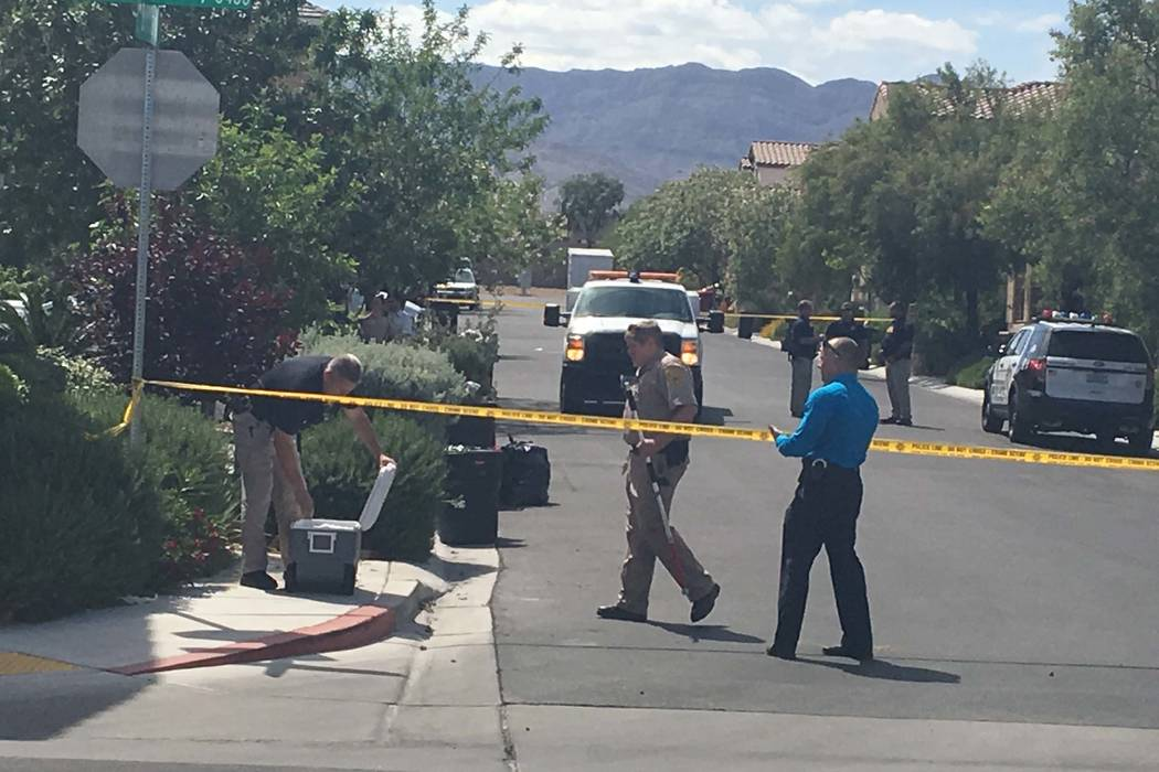 A 6-month-old child died after it was attacked by a dog in the 9100 block of Brilliant Prairie Court in northwest Las Vegas, Monday, May 8, 2017. (Bizuayehu Tesfaye/Las Vegas Review-Journal) @bizu ...