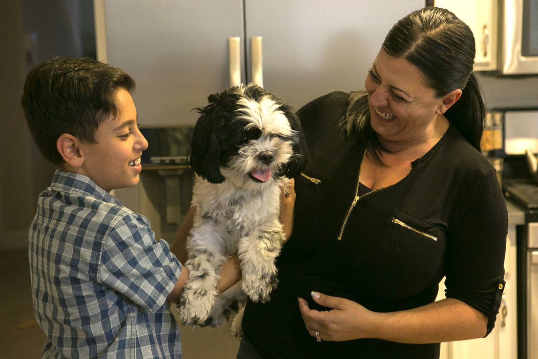 Mother Diana son Zareh Shamirza play with their dog Panda at their home on Thursday, May 11, 2017, in Las Vegas. Bridget Bennett Las Vegas Review-Journal @bridgetkbennett