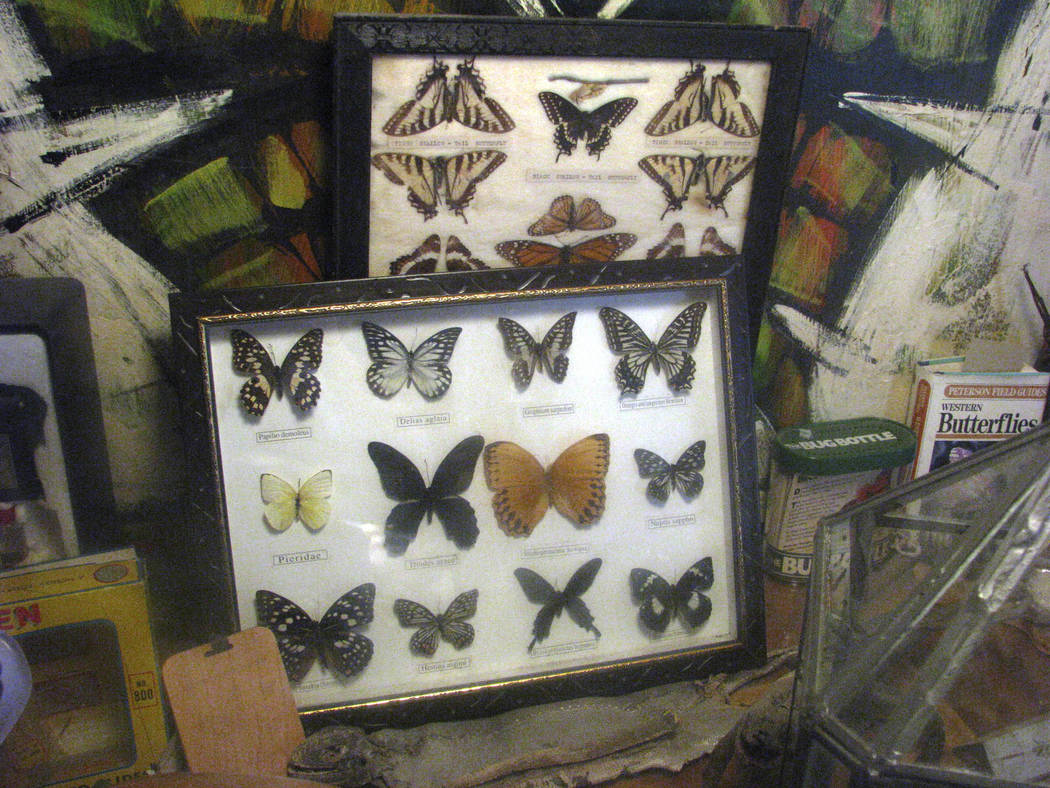 Dr. Lonnie Hammargren started collecting as a child, beginning with a butterfly collection. 2008 photo. (F. Andrew Taylor/Review-Journal)
