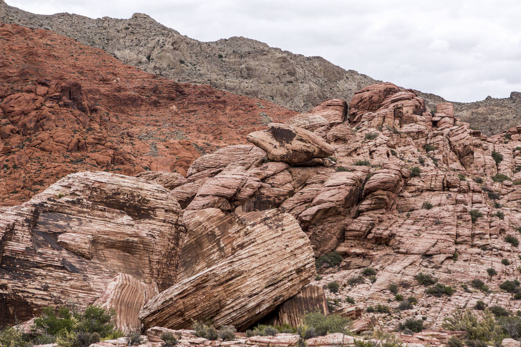 The place where Candace Kawatsu fell 35 feet in May 2015 on the Kraft Mountain Loop trail in Calico Basin on Thursday, May 18, 2017. Patrick Connolly Las Vegas Review-Journal @PConnPie